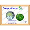 Camptothecin-natural camptothecin