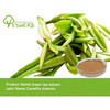 top quality 95% EGCG green tea extract / instant green tea powder with free sample for test