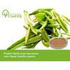 100% pure organic bio natural green tea extract