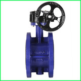 Bi- Pass Concentric Type Butterfly Valve