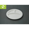 10 inch disposable biodegradable with 3 department plate