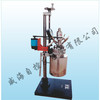 WHFSK Lab series magnetic stirring reactor