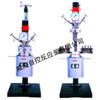 WDFSK  lab  series magnetic stirred reactor