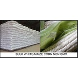 BULK WHITE CORN/MAIZE | Non GMO