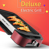 Portable BBQ grill and professional grill