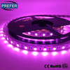 Prefer special color LED strip violet
