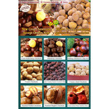 organic peeled ringent chestnuts