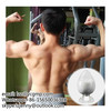 Sarms Sr9009 Used for Fat Burning and Weight-Loss