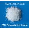 Anionic Polyacrylamide PAM flocculant crystal