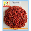 Ningxia Goji Berry,Chinese wolfberry, dried Goji berry