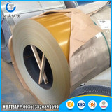High Quality Pre painted Galvanised Coil With Low Price
