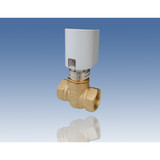 Electrothermic two-way valve