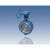 Double Eccentric Double Flange Butterfly Valves