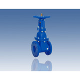 Rising Type Resilient Seat Gate Valve
