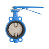 1inch 2inch 3inch butterfly valve without pin