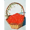 Organic Goji Berry Goji berries from Ningxia
