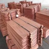 Copper Cathodes, Copper Sheets, Copper Strips, Copper Plates, Copper Coils, Copper Foils.