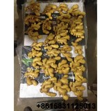 China supplier exporter Fresh ginger 50g ,150g ,Dried garlic Joyce M.G Group Company Limited tradersoho@gmail.com