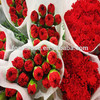 Cut fresh red carnation flowers Master for mother's days flower