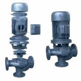 GW Vertical pipeline sewage pump
