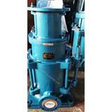 DL Vertical multistage booster feeding water pump