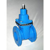 Cast Iron Resilient Seated Wedge Gate Valves