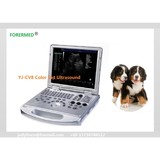 Cheapest VET 3D 4D Portable Ultrasound Color Doppler