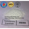 Safe Raw Steroid Testosterone Enanthate for Bodybuilding Muscle