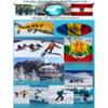 european ski tours