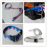 Collar and Leashes