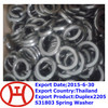 Duplex2205 S31803 Spring Washer