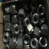 ASTM A194 Gr.8C 8CA Nylon Lock nut