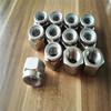ASTM A194 Gr.8M 8MA Nylon Lock nut