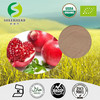 Organic pomegrante Juice Powder