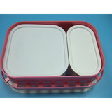 Plastic box mold