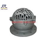 Wcb/Lcb/Wc6/CF8/CF8m Foot Valve with Flange,Flange foot valve,bottom foot valve