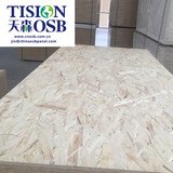 Best prices factory dircetly professional 1220x2440mm 11mm osb-3 e1 in china