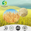 Hydrolyzed Vegetable Protein,Wheat Protein 80%,High Quality Dry Wheat Gluten