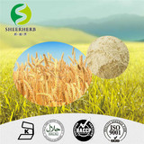 High Quality Supply 100% Natural Wheat Peptide,Anti-aging Forever Living Products,Wheat protein hydrolyzate manufacturer