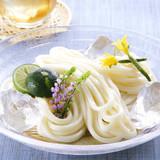 China Organic Fresh udon noodles