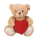 Plush Teddy Bear Valentine Day Gift