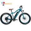 electric fat tyre bike