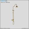 Wall mounted European vogue shower arm brass bathroom decor shower mixer MSA-45