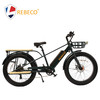 2018 new speed big power mountain ebike / fat tire electric bike / snow e-bike