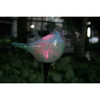 LED solar powered garden light yard waterproof motion sensor auto on color bird