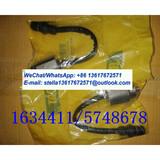 Sensor Gp-Detonation 1634411/5748678/163-4411/574-8678 CAT G3412 G3408 G3612 G3606 Gas Generator Set Spare Parts