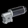 DC gear motor  worm gear motor