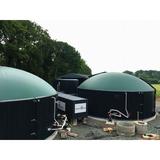 Biogas generator, CHP generator, container silent type