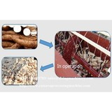 Cassava peeling machine tapioca peeler equipment