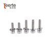 Stainless Steel Hex Socket Cap Washer Screw
